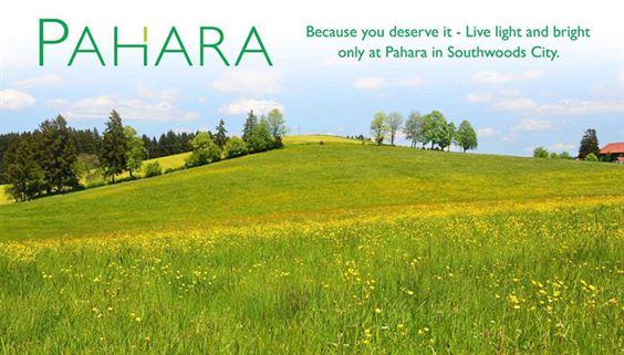 Pahara